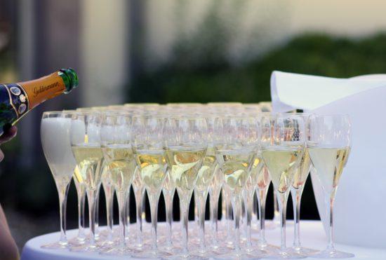 champagne-concept-zwerfkei